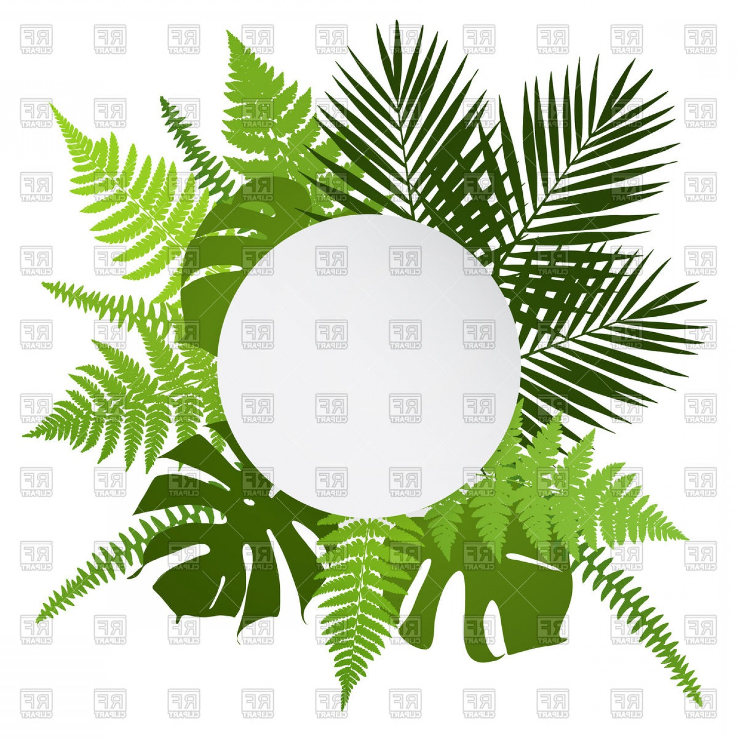 Green Oval Border Vector: Tropical Leaves Round Frame Vector Clipart