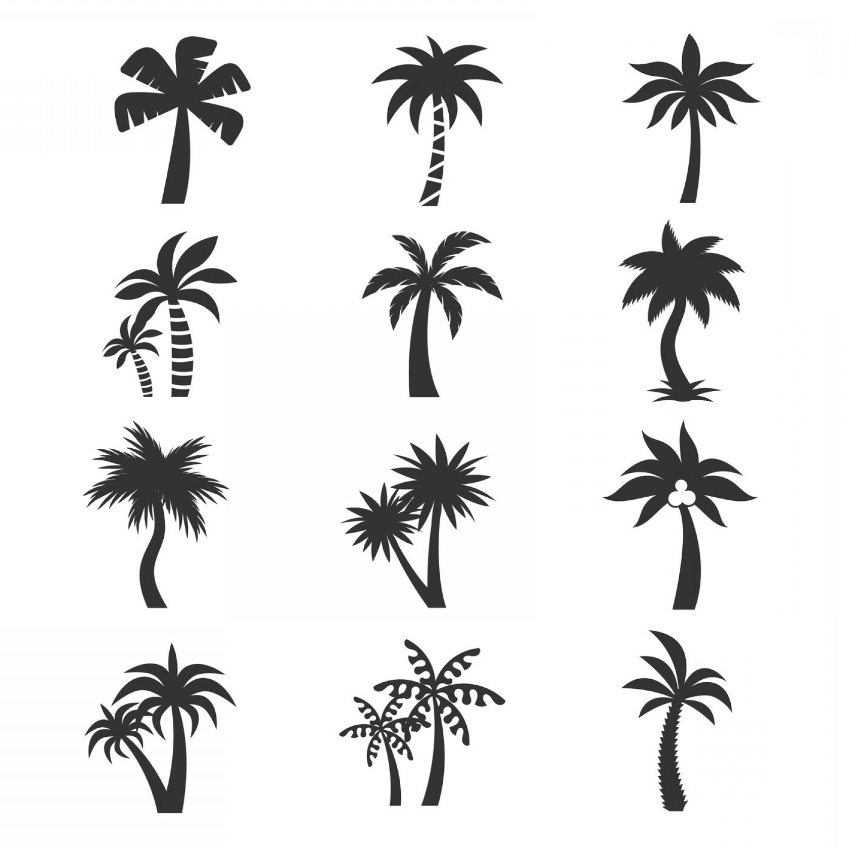 Watercolor Palm Tree Vector: Tropical Palm Tree Vector Icons Set Silhouettes On The White Backgrou