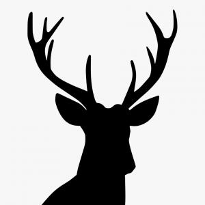 Football Laces Vector Silhouette: Ttmitwstag Vector Horns Deer Head Silhouette Png Transparent
