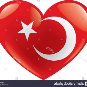 Turkey Logo Vector Art: Turkey Flag Vector Illustration On A White Background Image