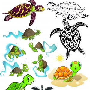 Vector Drawings Of Turtles: Turtle Clipart Vector Images Cute