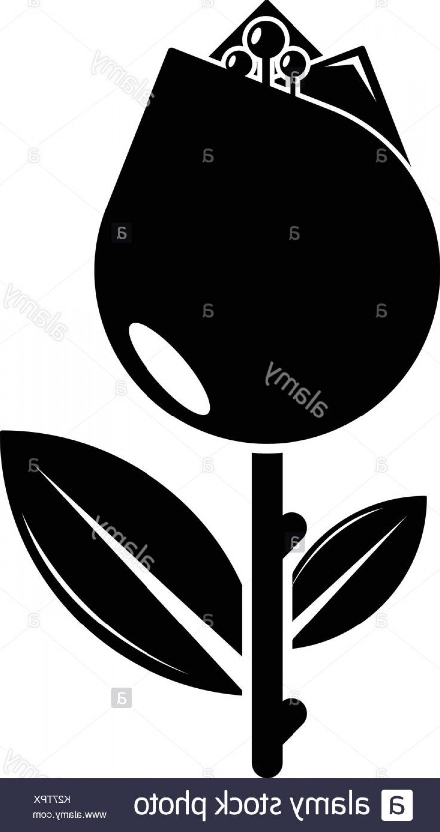 Tulip Icon Vector: Tulip Icon Simple Black Style Image