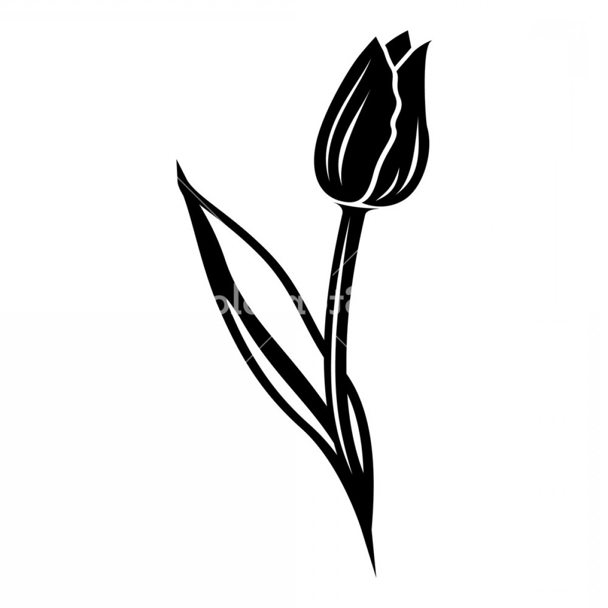 Tulip Icon Vector: Tulip Icon Simple Illustration Of Tulip Vector Icon For Web Bzgffnxpjobvj