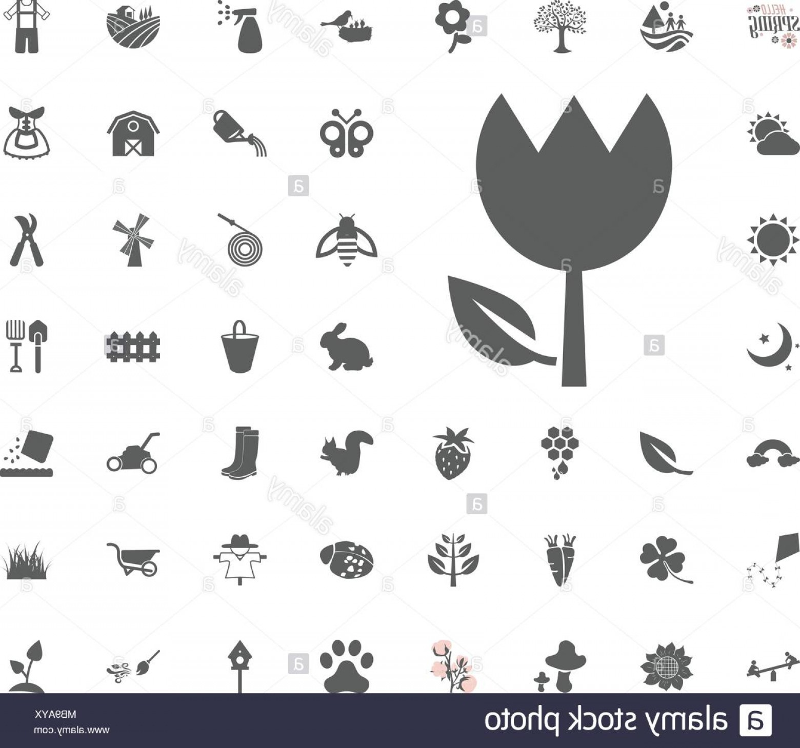 Tulip Icon Vector: Tulip Icon Spring Vector Illustration Icon Set Image