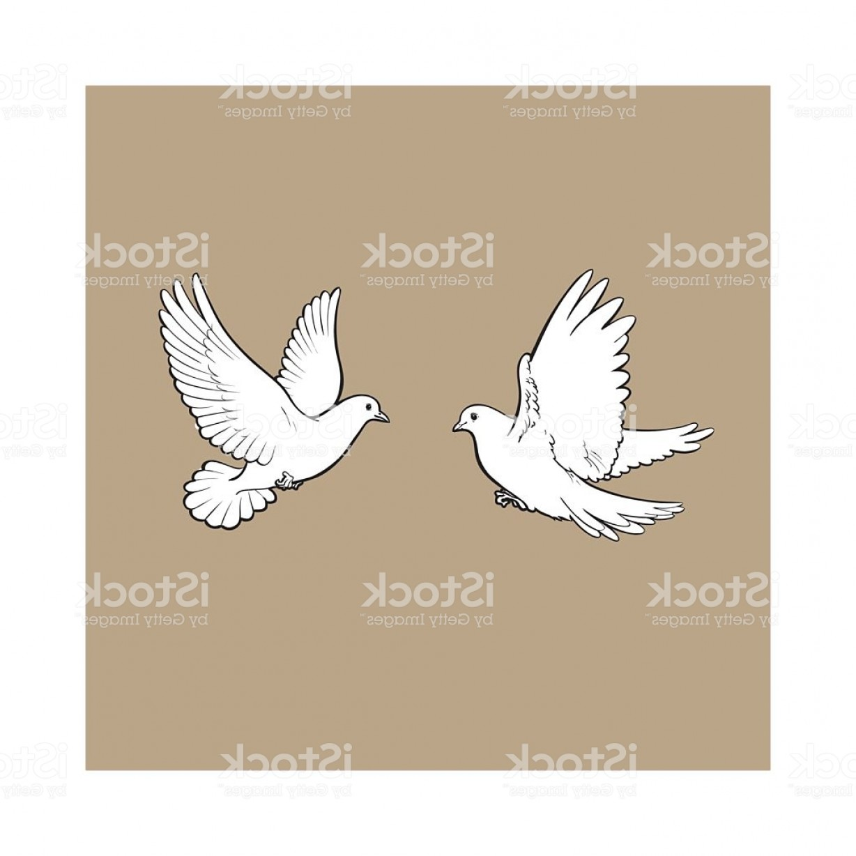 Vector Wedding Doves 2: Two Free Flying White Doves Isolated Sketch Style Illustration Gm