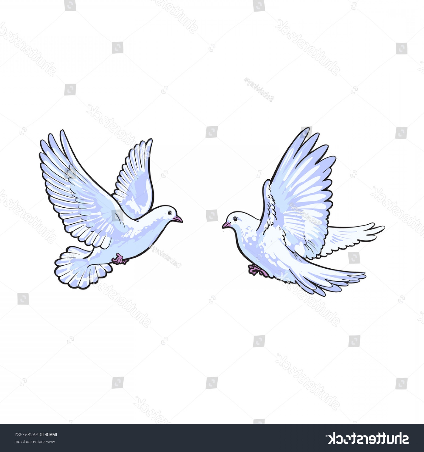 Vector Wedding Doves 2: Two Free Flying White Doves Sketch
