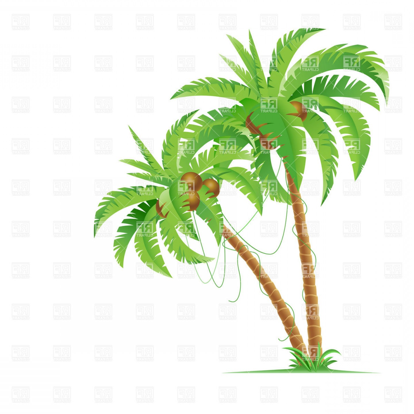Palm Tree Clip Art Vector: Two Palm Trees With Coconuts Vector Clipart