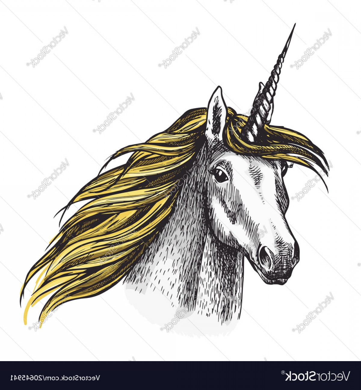 Unicorn Horn Vector: Unicorn Horse Sketch Fairy Tale Animal Vector