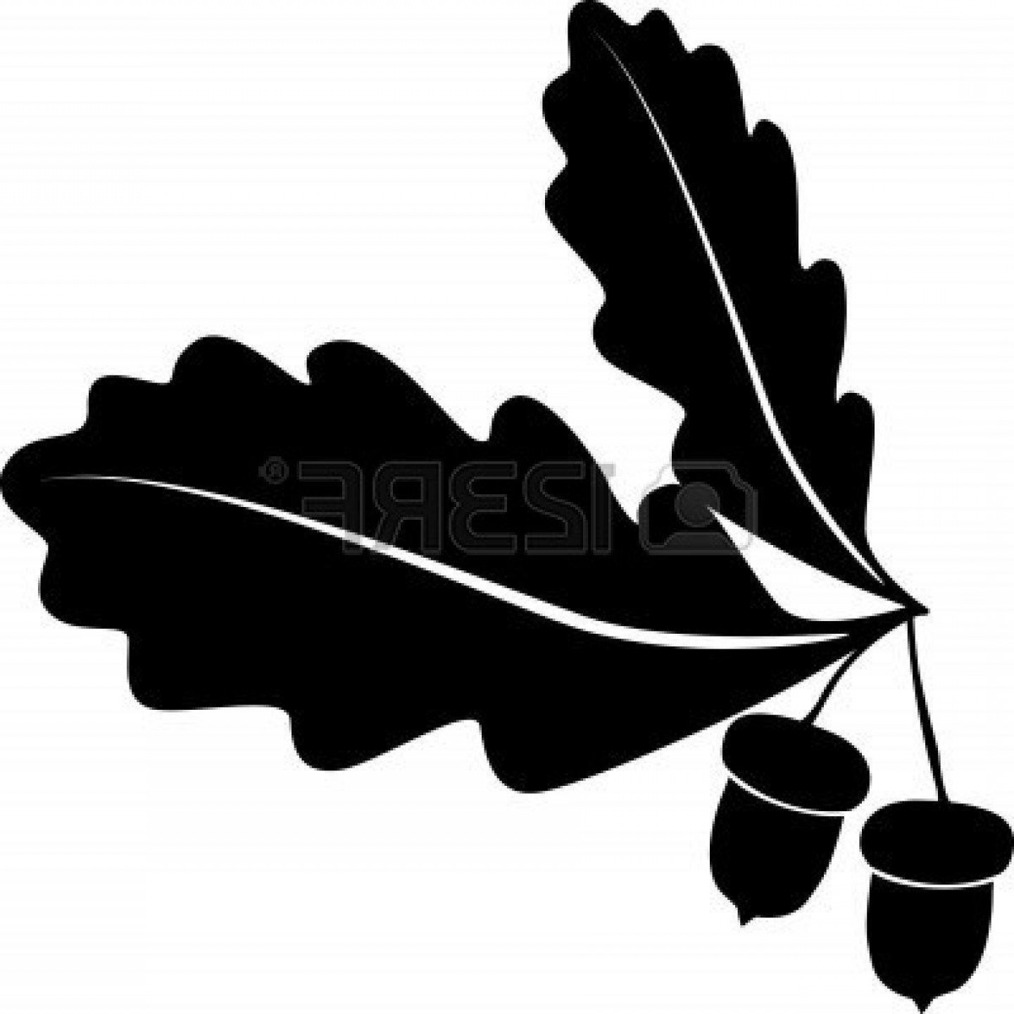 Oak Tree Silhouette Vector Graphics: Unique Oak Tree Vector Free Download Acornl Style Images