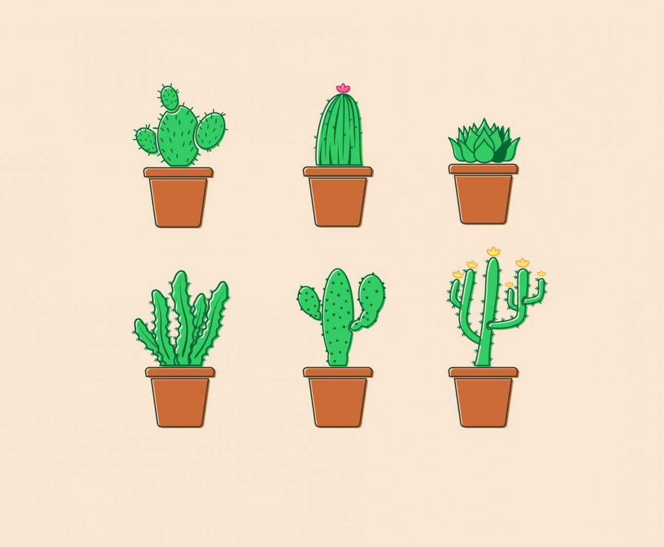 Potted Cactus Plant Vector: Unique Potted Cactus Plants Vector Pictures