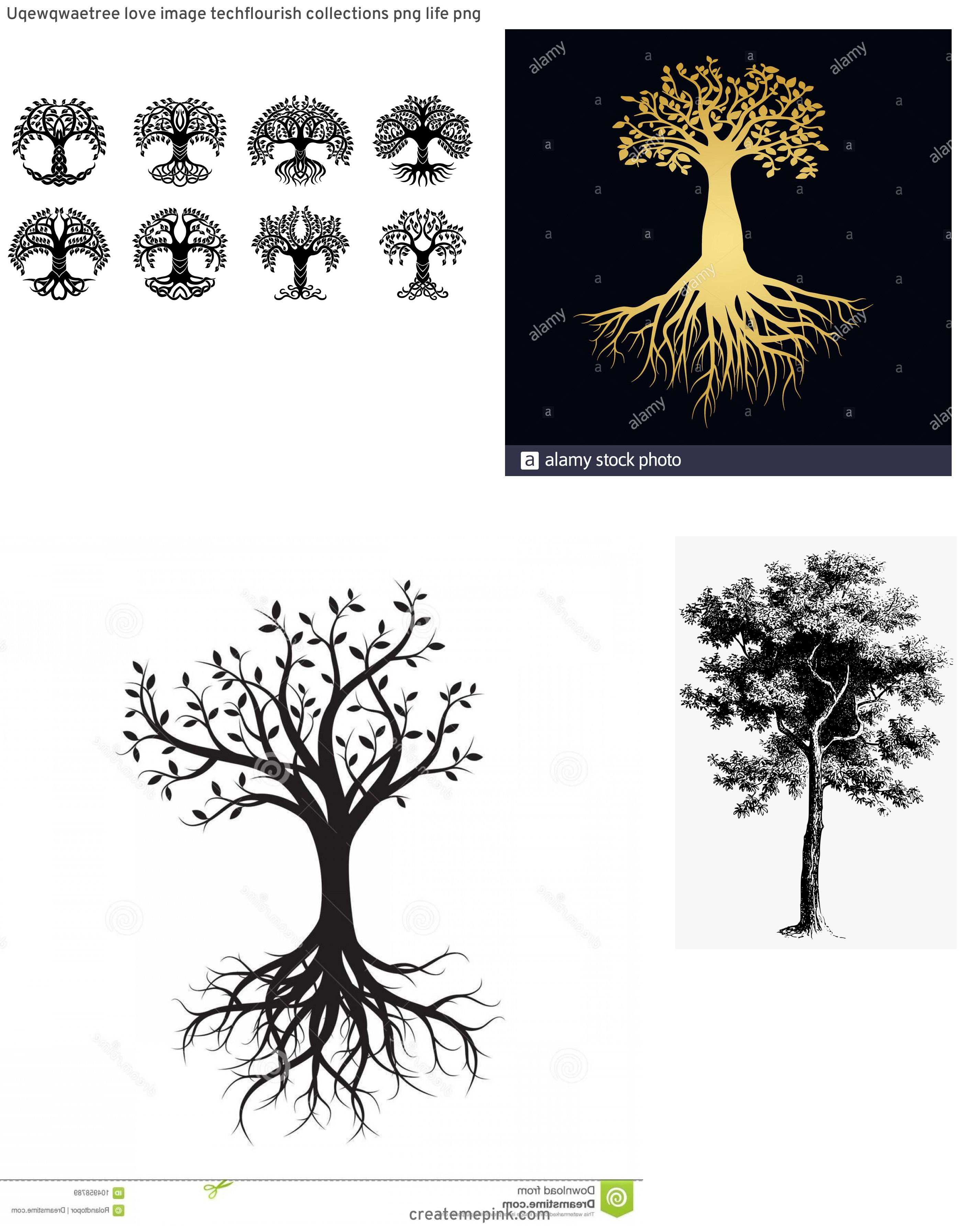Vector Images Black Tree Of Life: Uqewqwaetree Love Image Techflourish Collections Png Life Png
