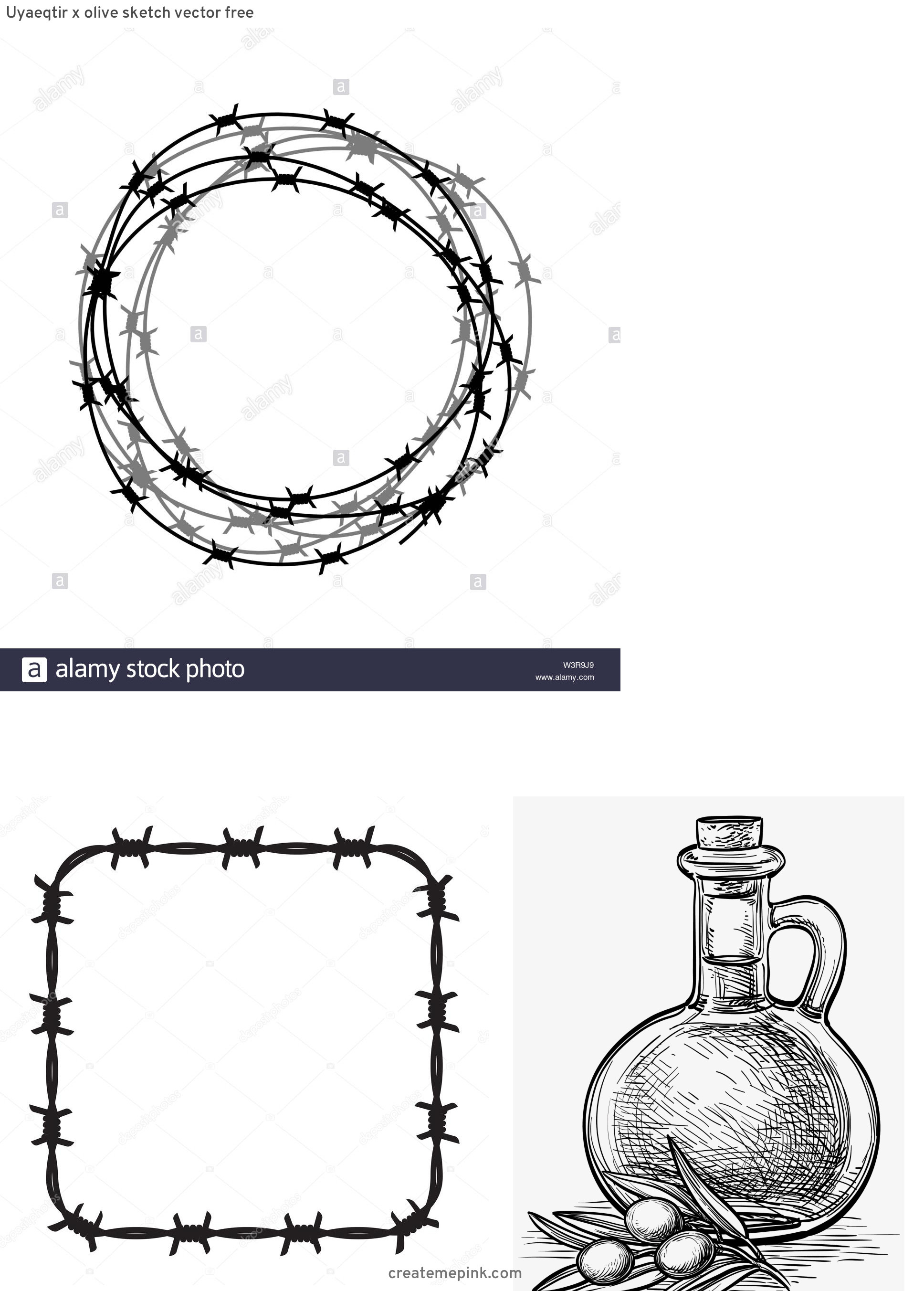 Barb Wire Wreath Vector: Uyaeqtir X Olive Sketch Vector Free