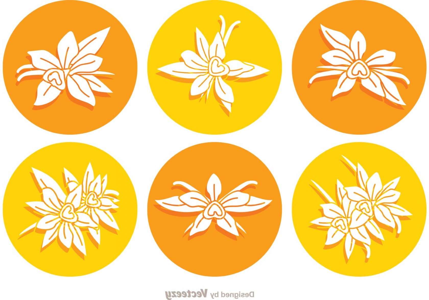Icon Of Flower Vectors: Vanilla Flower Round Icon Vectors