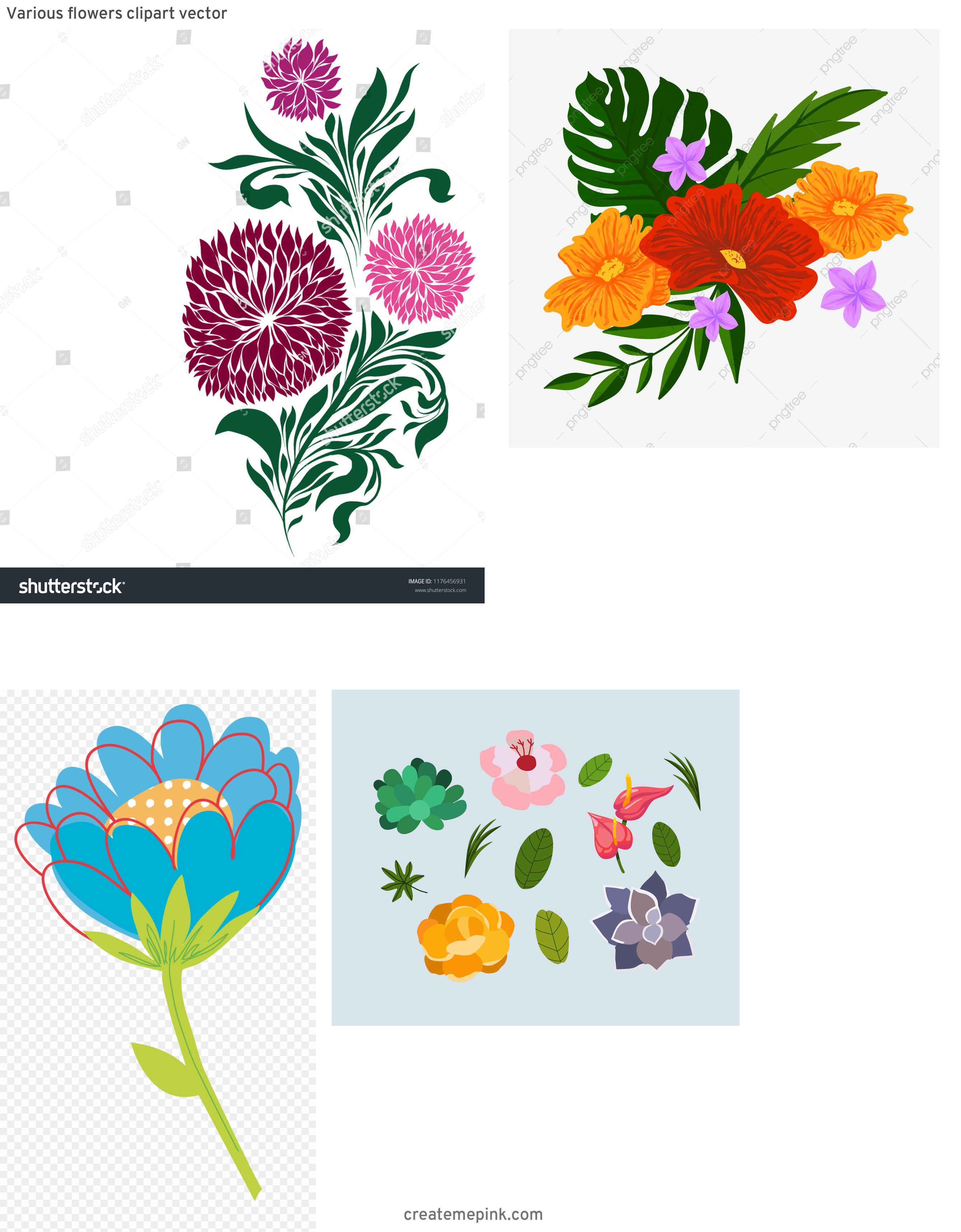 Vector Graphics Floral: Various Flowers Clipart Vector