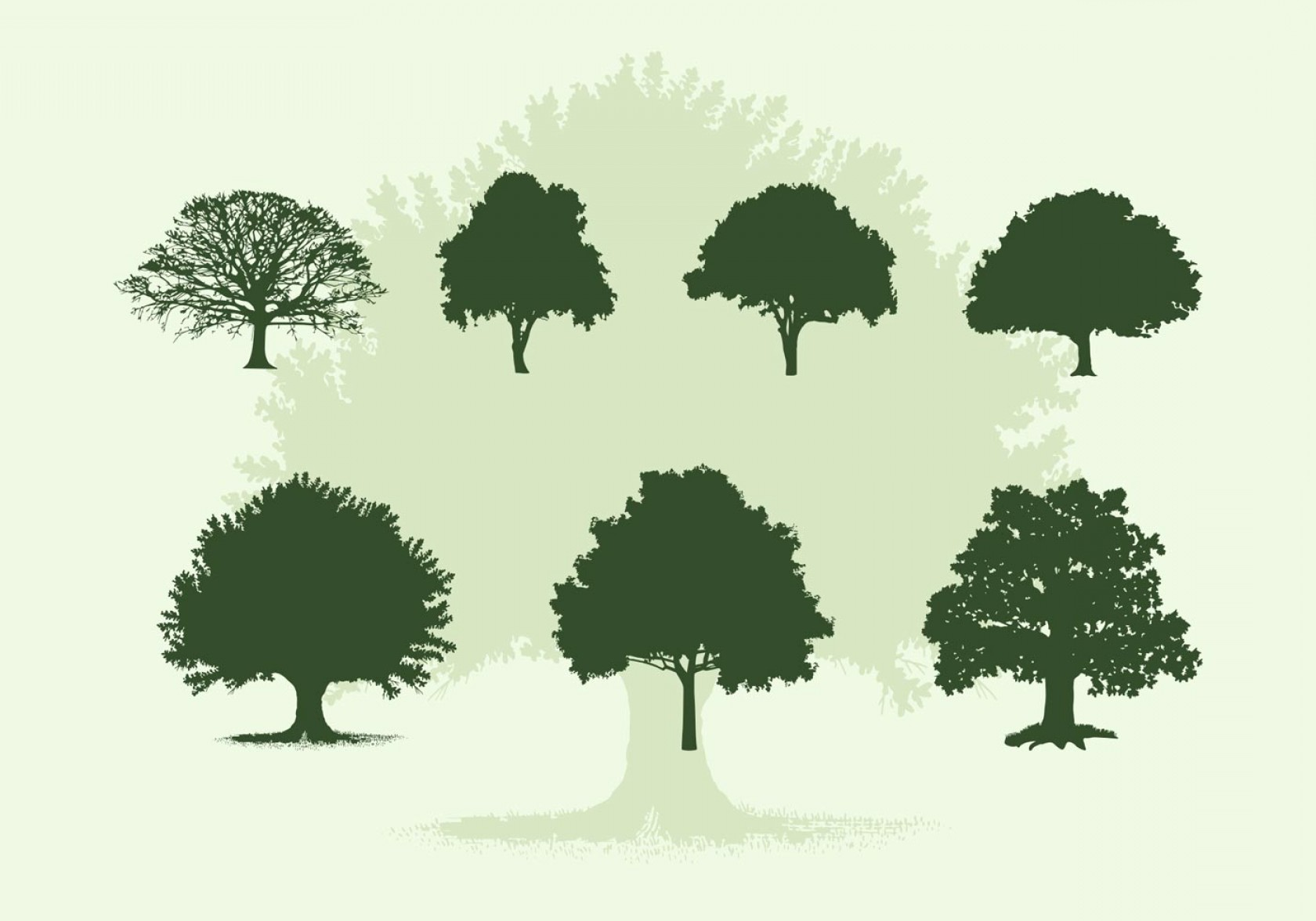 Oak Tree Silhouette Vector Graphics: Various Oak Trees Vector Silhouettes Download