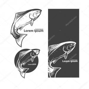 Vectors Of Salmon Jumping: Vector Clip Art Of Retro Leaping Atlantic Salmon Fish And Green Water Splash In A Brown And Tan Circle By Patrimonio