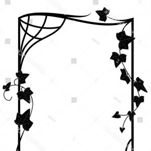 Black And White Vector Ivy: Vector Frame Branches Ivy Black White