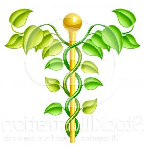 Gold Vine Vector: Vector Illustration Of A D Natural Vine And Gold Staff Caduceus By Atstockillustration