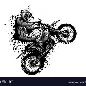 Vector Dirt Bike: Vector Motocross Illustration