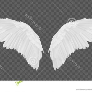 Torn Angel Wings Vector: Vector Realistic White Angel Wings Transparent Realistic Elegant White Angel Wings Grey Transparent Background Love Image