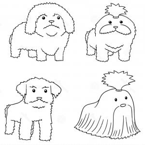 Shih Tzu Black And White Vector Cartoons: Vector Set Dog Shih Tzu Hand Drawn Cartoon Doodle Illustration Vector Set Dog Shih Tzu Image