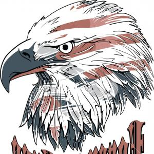 Eagle T-Shirt Vector Graphics: Vector T Shirt Design With Eagle Hpgyibxdwjgopm
