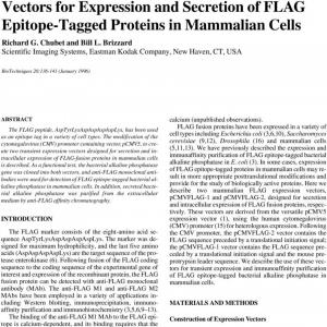 Mammalian Expression Vector: Vectors For Expression And Secretion Of Flag Epitope Tagged Proteins In Mammalian Cells