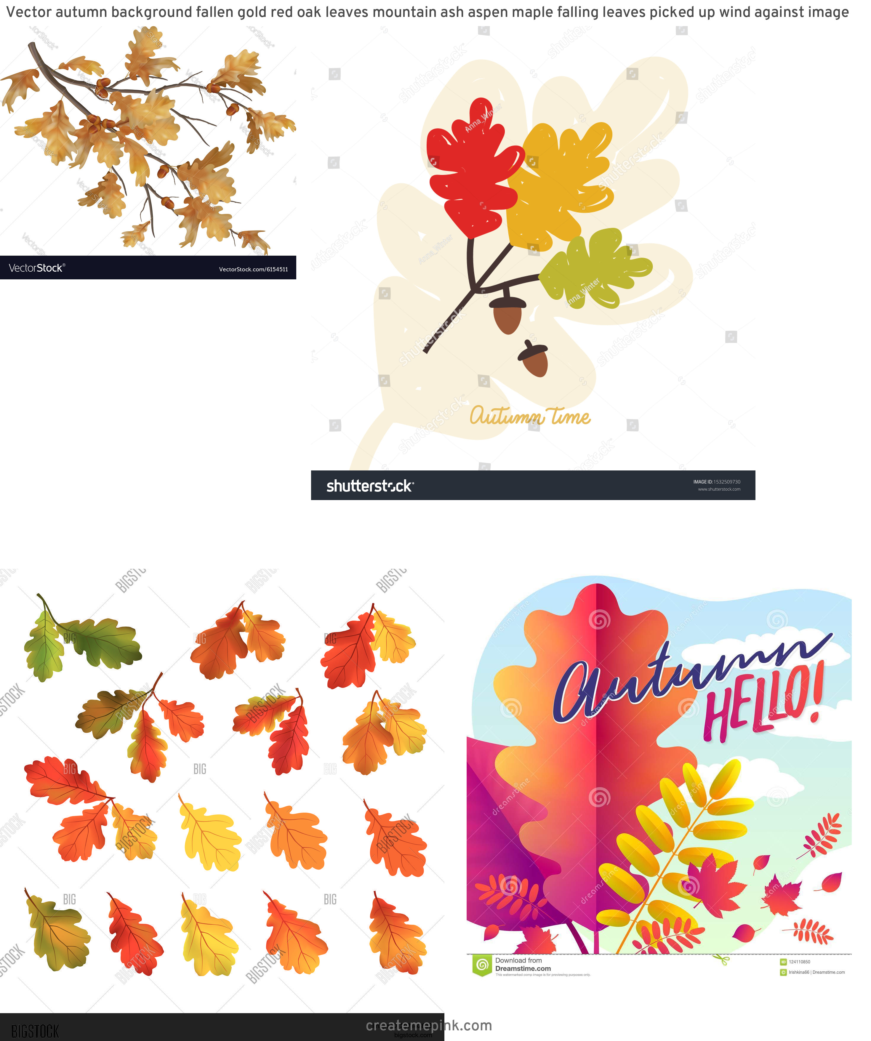 Falling Oak Leaves Vector: Vector Autumn Background Fallen Gold Red Oak Leaves Mountain Ash Aspen Maple Falling Leaves Picked Up Wind Against Image