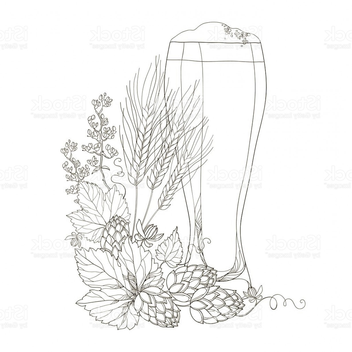 Hops Vector Art: Vector Beer Glass With Hops And Barley Isolated On White Gm