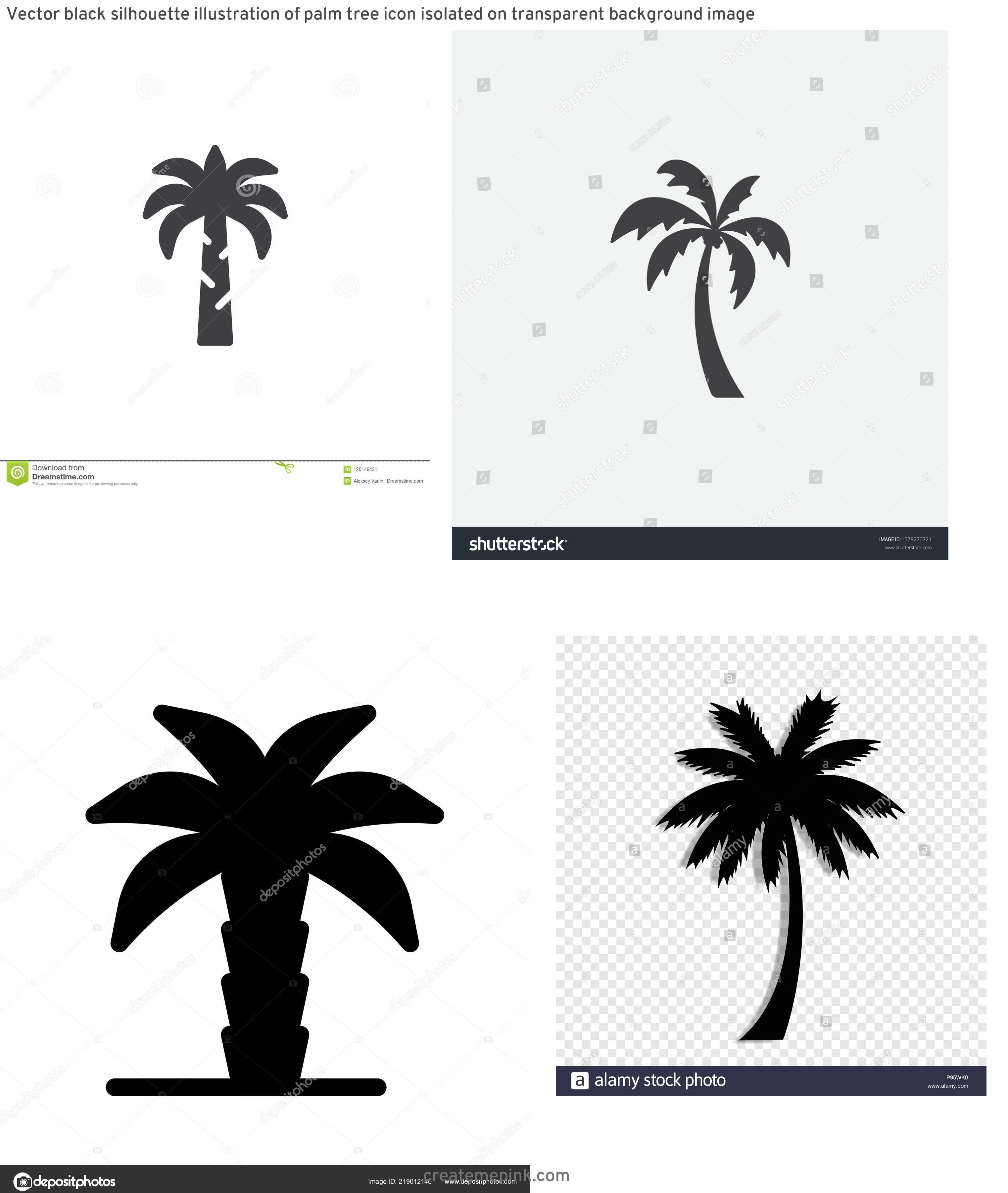 Palm Tree Icon Vector: Vector Black Silhouette Illustration Of Palm Tree Icon Isolated On Transparent Background Image