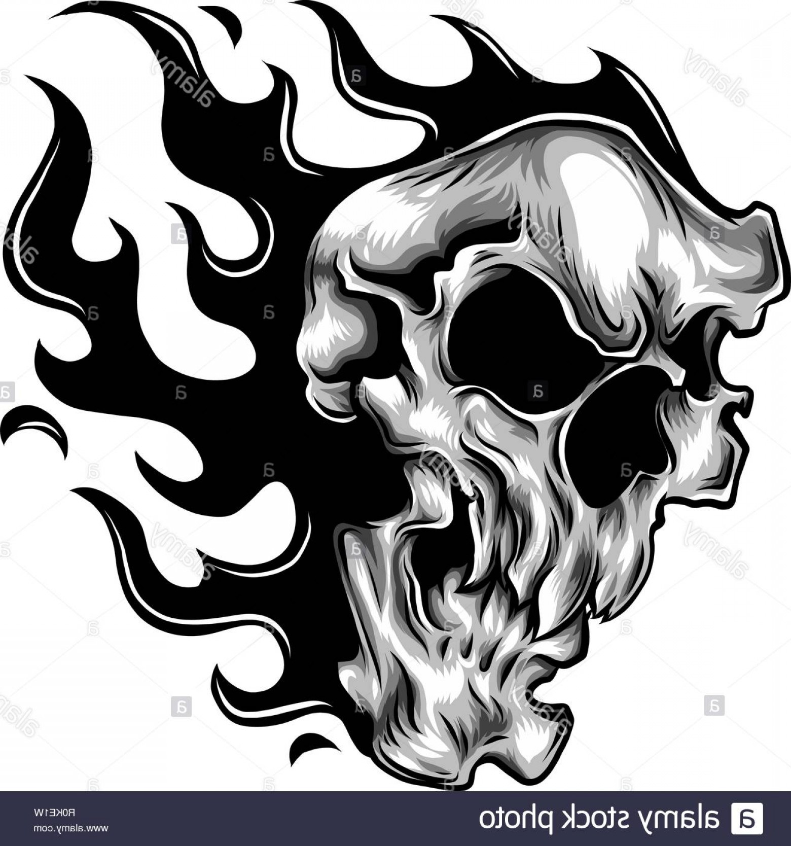 Harley -Davidson Skull Logo Vector: Vector Burning Tribal Flaming Skull B