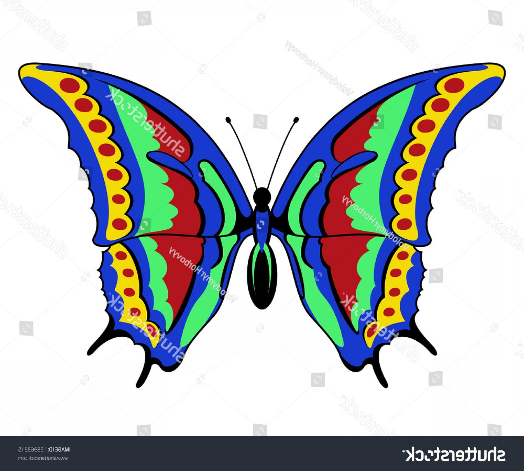 Vector Butterfly Clip Art: Vector Butterfly On White Background Clipart