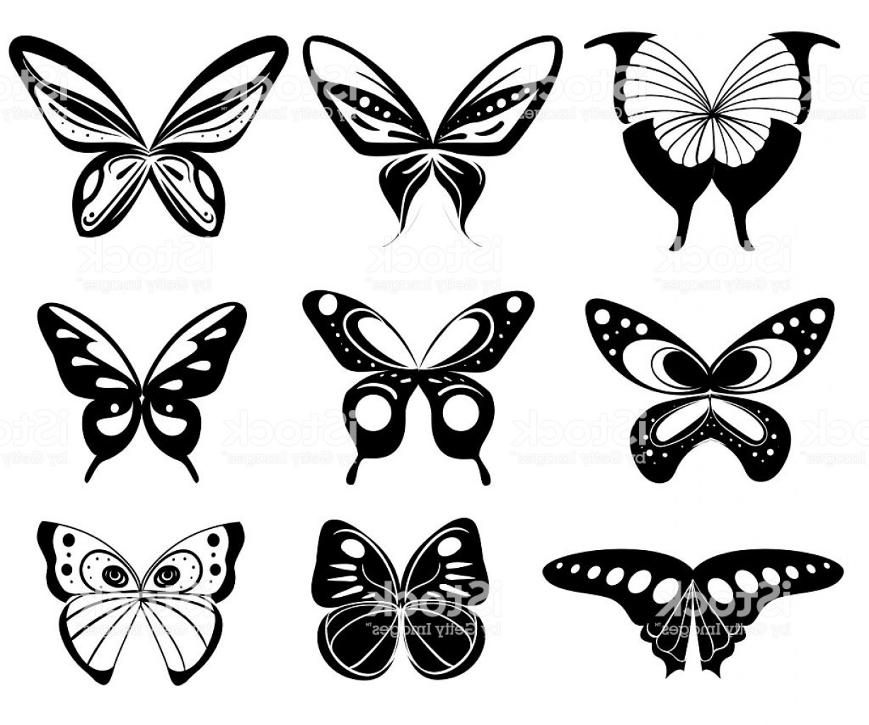 Vector Butterfly Clip Art: Vector Butterfly Set Butterfly Colorful Different Types Gm