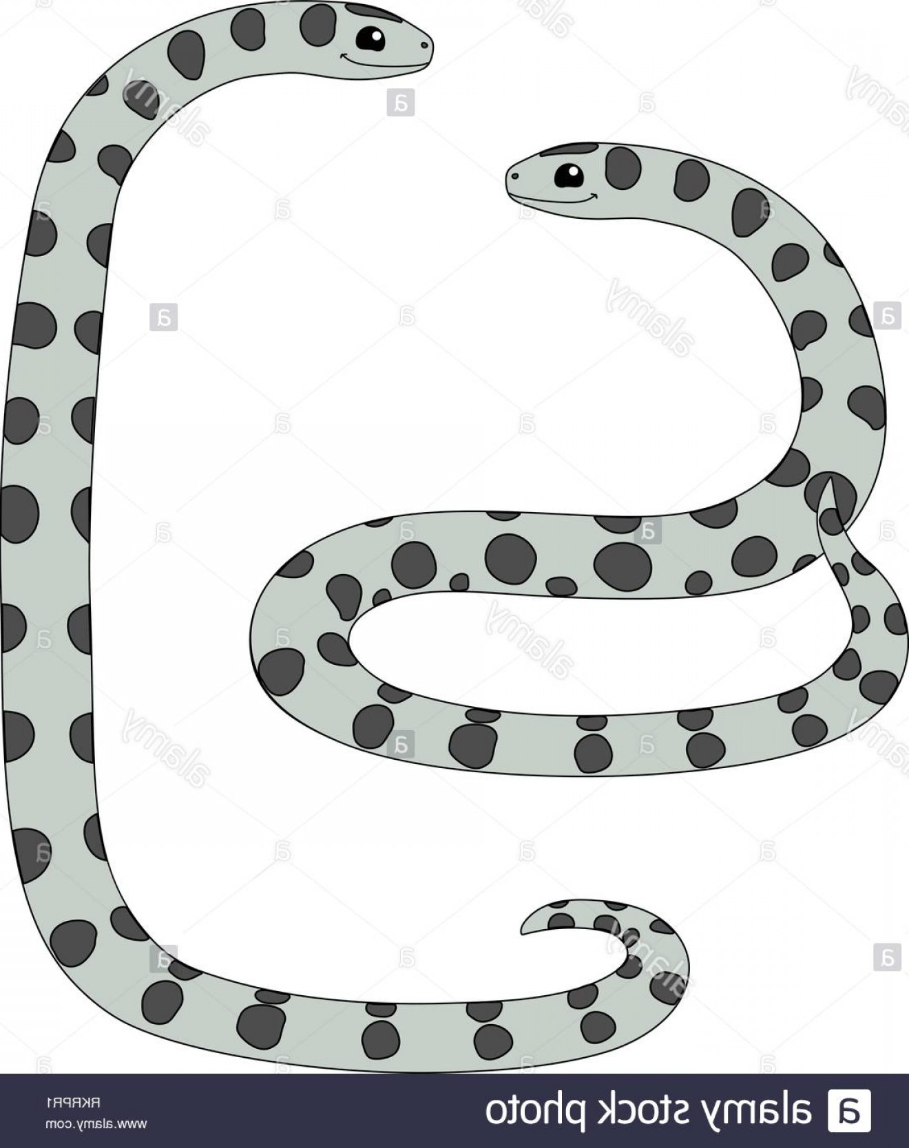 Vector Rainforest Anaconda: Vector Cartoon Animal Clipart Anaconda Snake Set Image