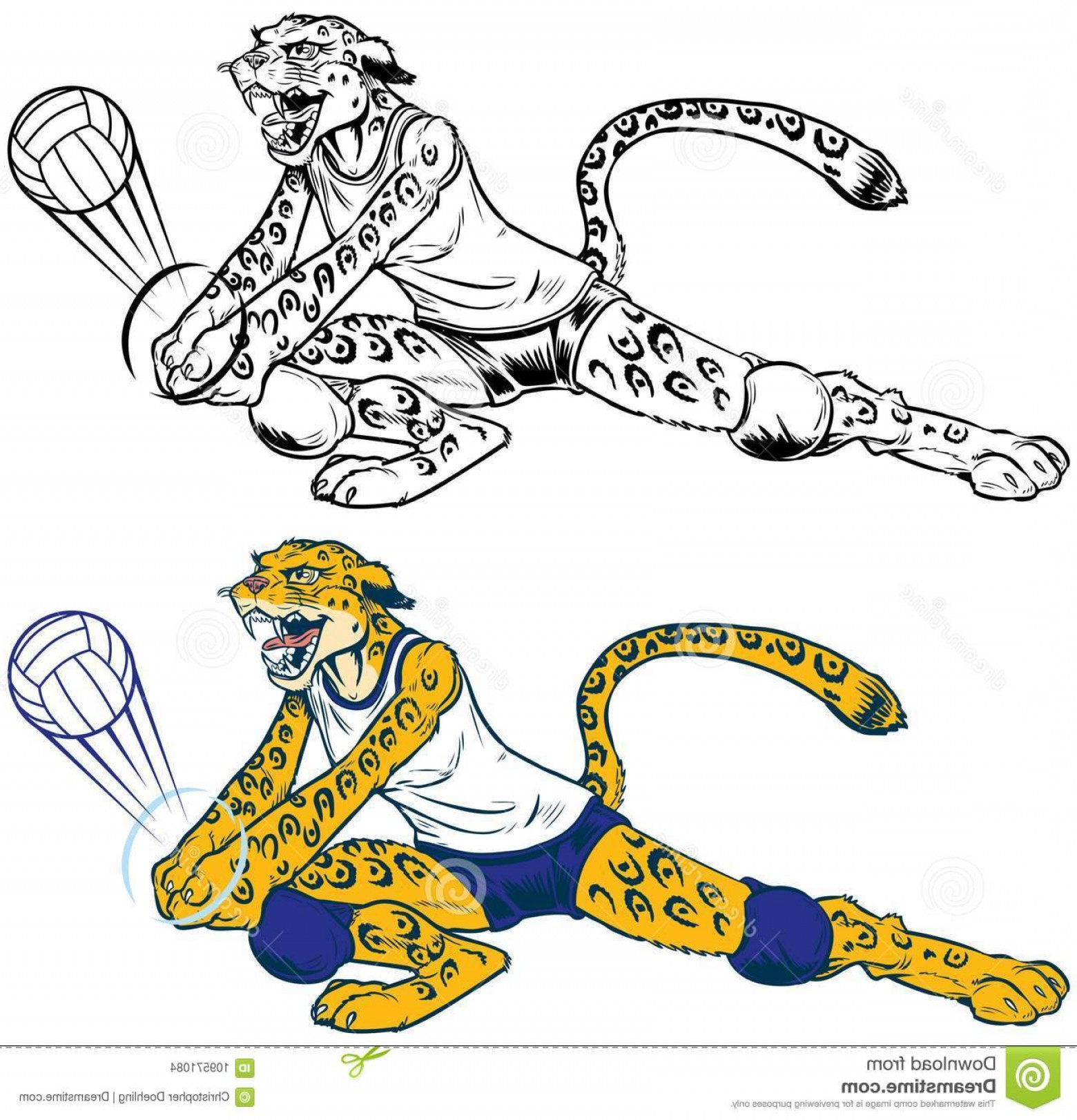 Volleyball Vector Dog Lady: Vector Cartoon Clip Art Illustration Lady Wildcat Leopard Jaguar Volleyball Player Mascot Doing Dig Character Ball Image