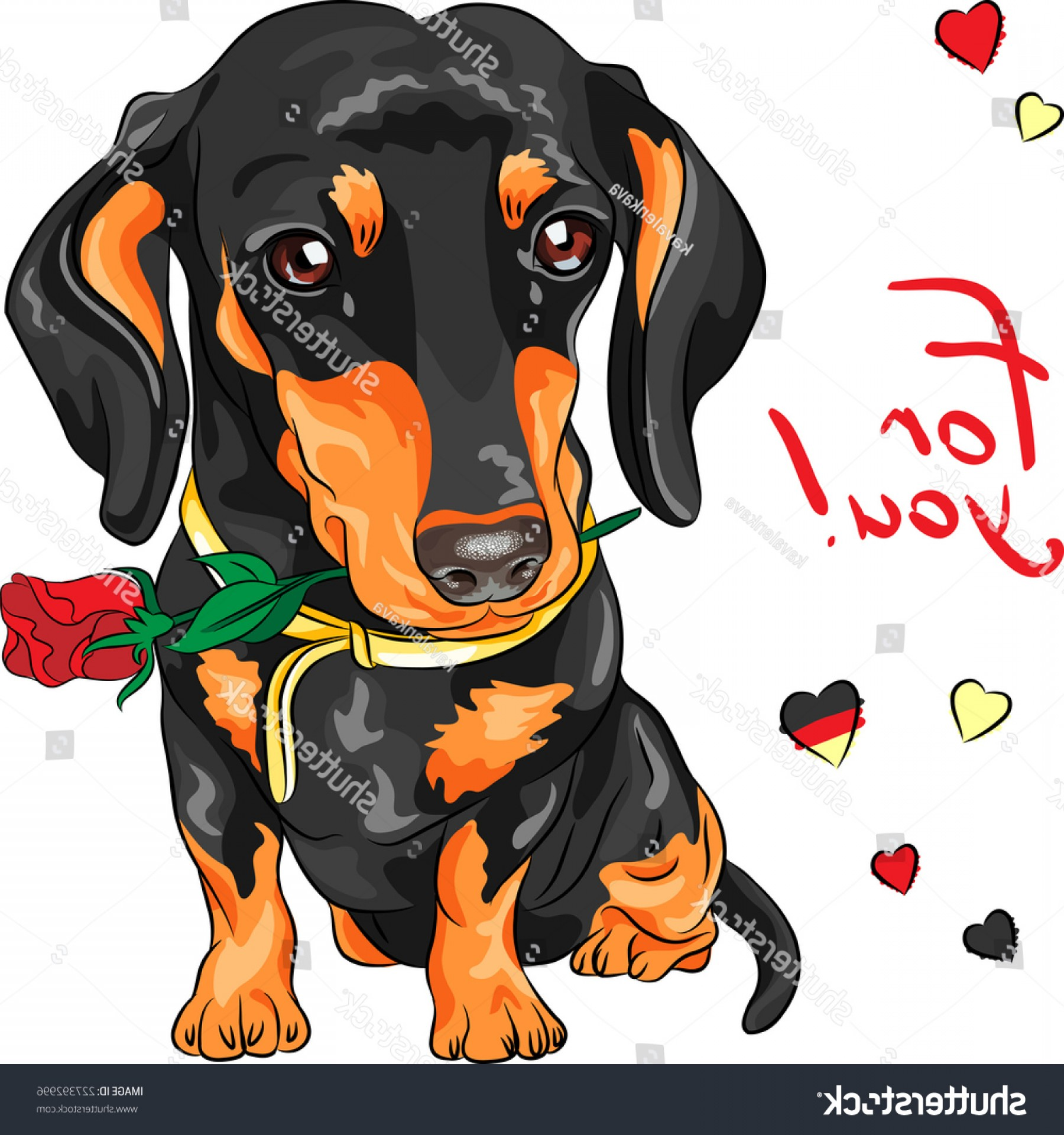 Double Boxer Dog Vector: Vector Cute Dog Breed Dachshund Red