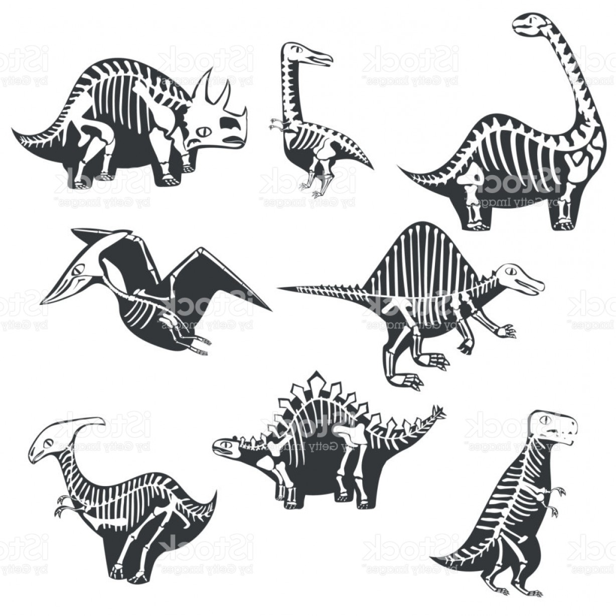 Vector Dinosorous: Vector Dinosaurs Silhouettes With Skeleton Isolated On White Background Gm