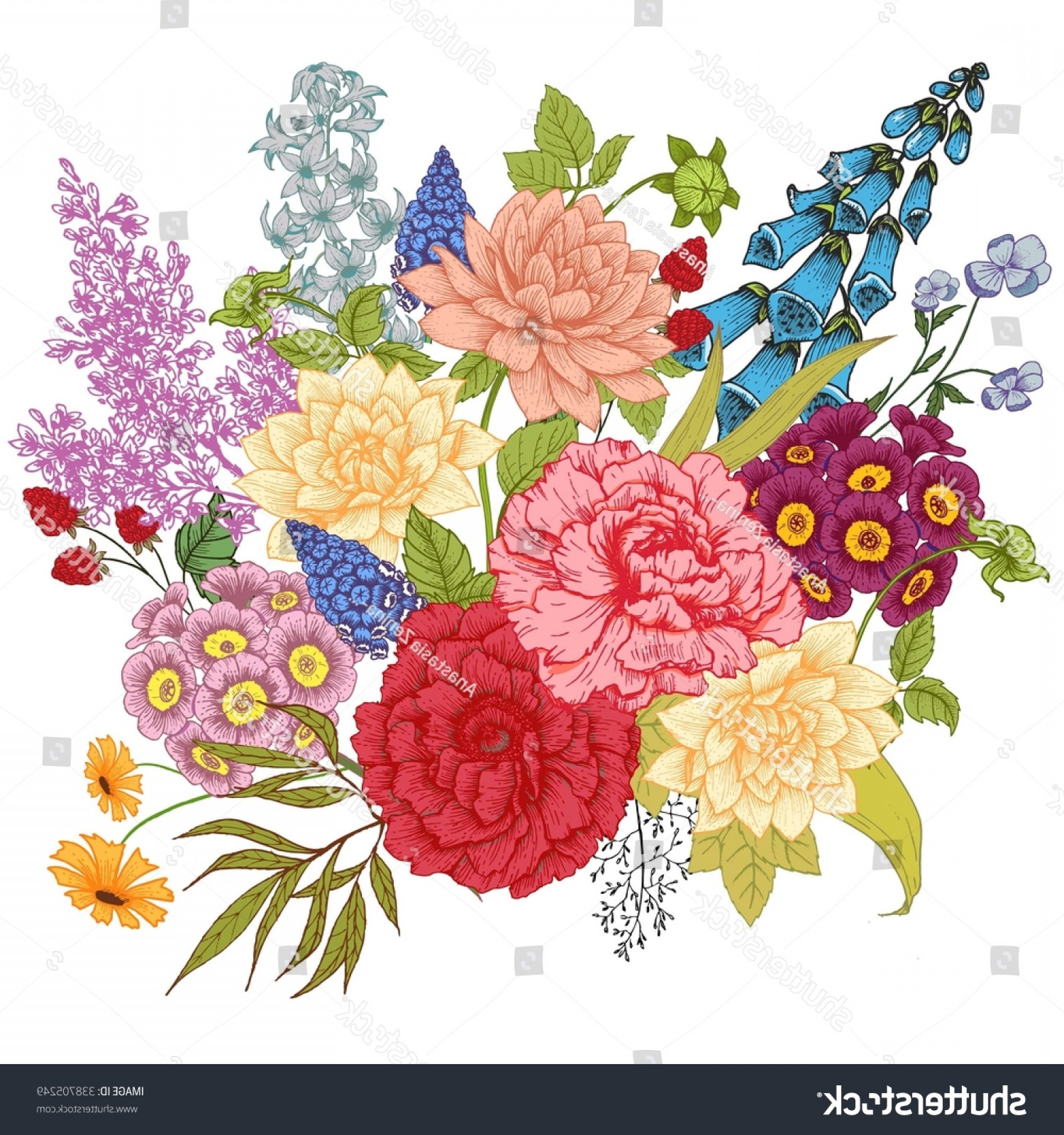 Lilac Vector Drawing: Vector Drawing Composition Flower Peony Rose