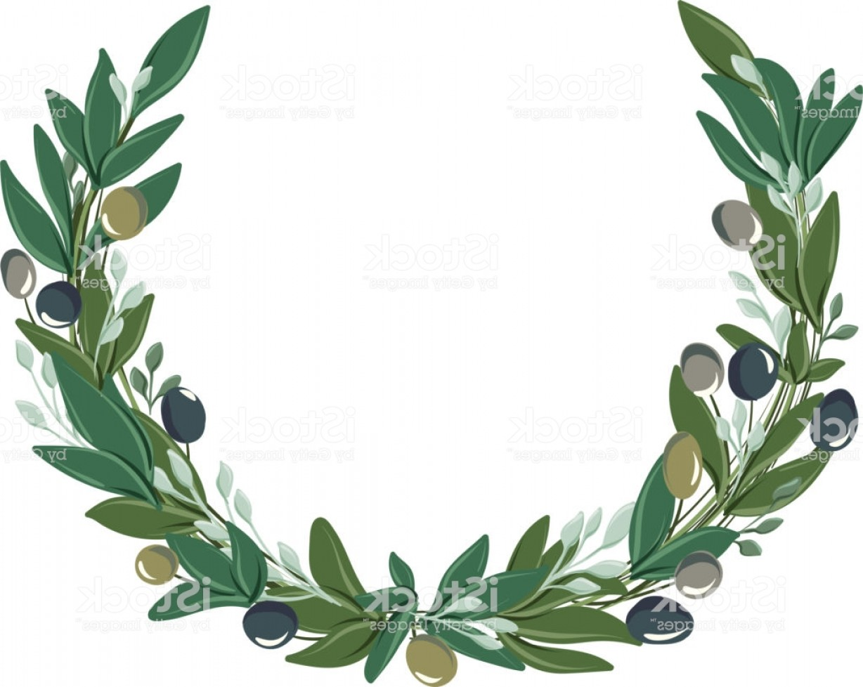 Half Leaf Wreath Vector: Vector Drawings Of Half Round Wreath With Olive Leaves And Olives Of Different Gm