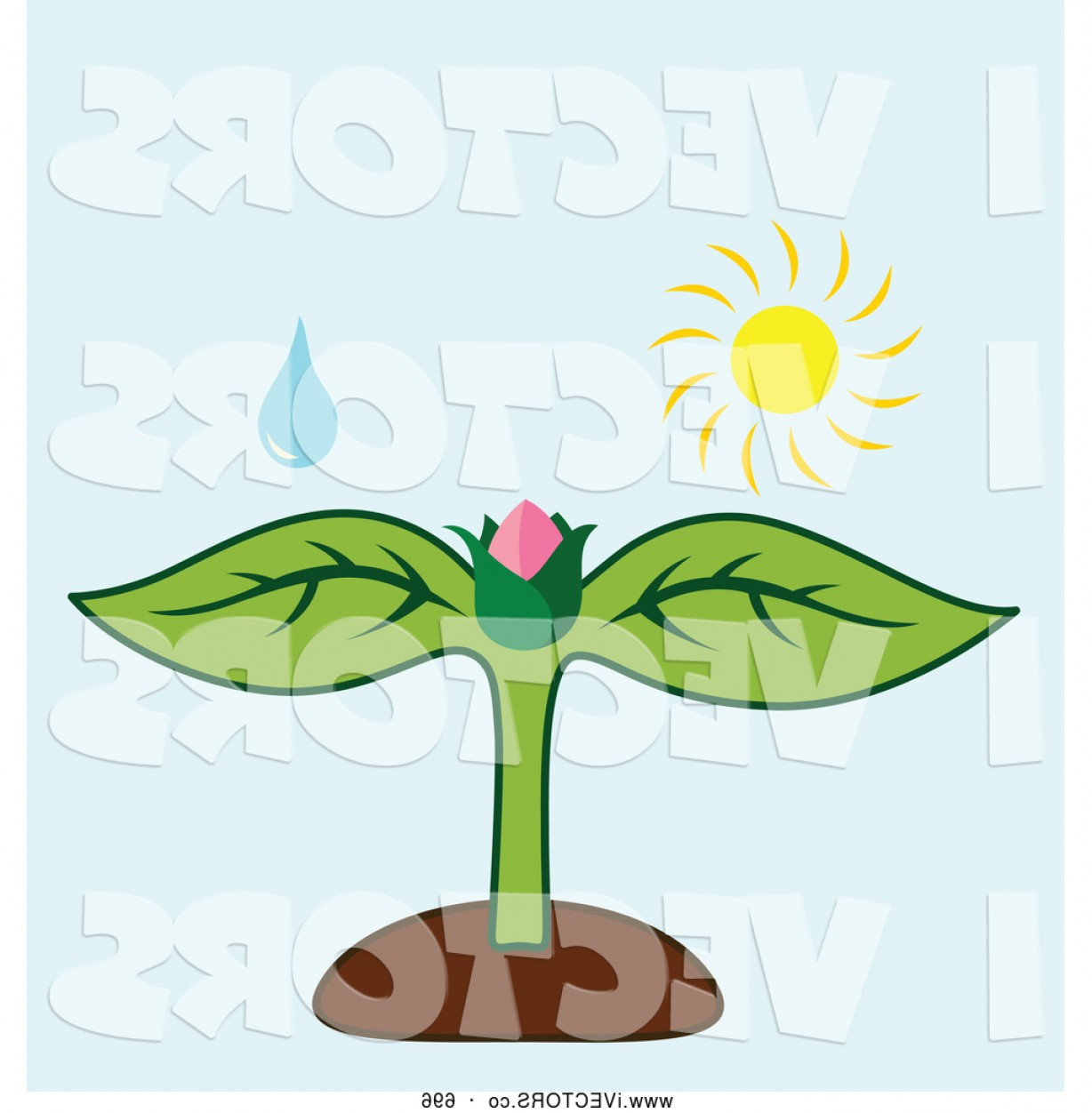 Bud Vector: Vector Graphic Of A Eco Friendly Water Drop And Sun Over A Flower Bud On A Plant By Cherie Reve