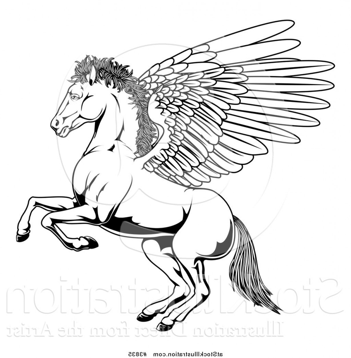 Vector Hi Res Black And White Wing: Vector Illustration Of A Black And White Winged Pegasus Horse Rearing Outline By Atstockillustration
