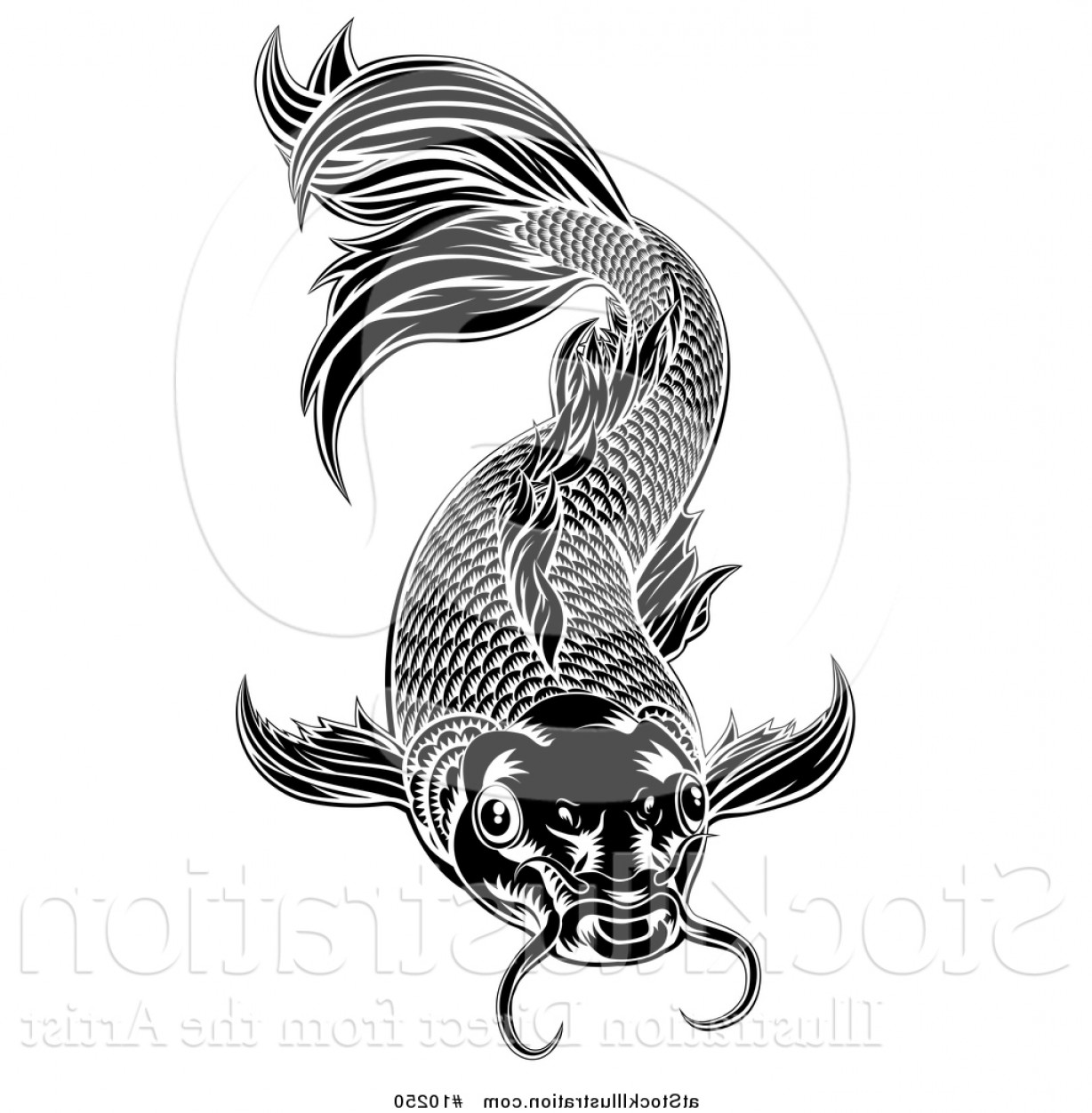 Black And White Koi Vector: Vector Illustration Of A Black And White Woodcut Carp Koi Fish By Atstockillustration