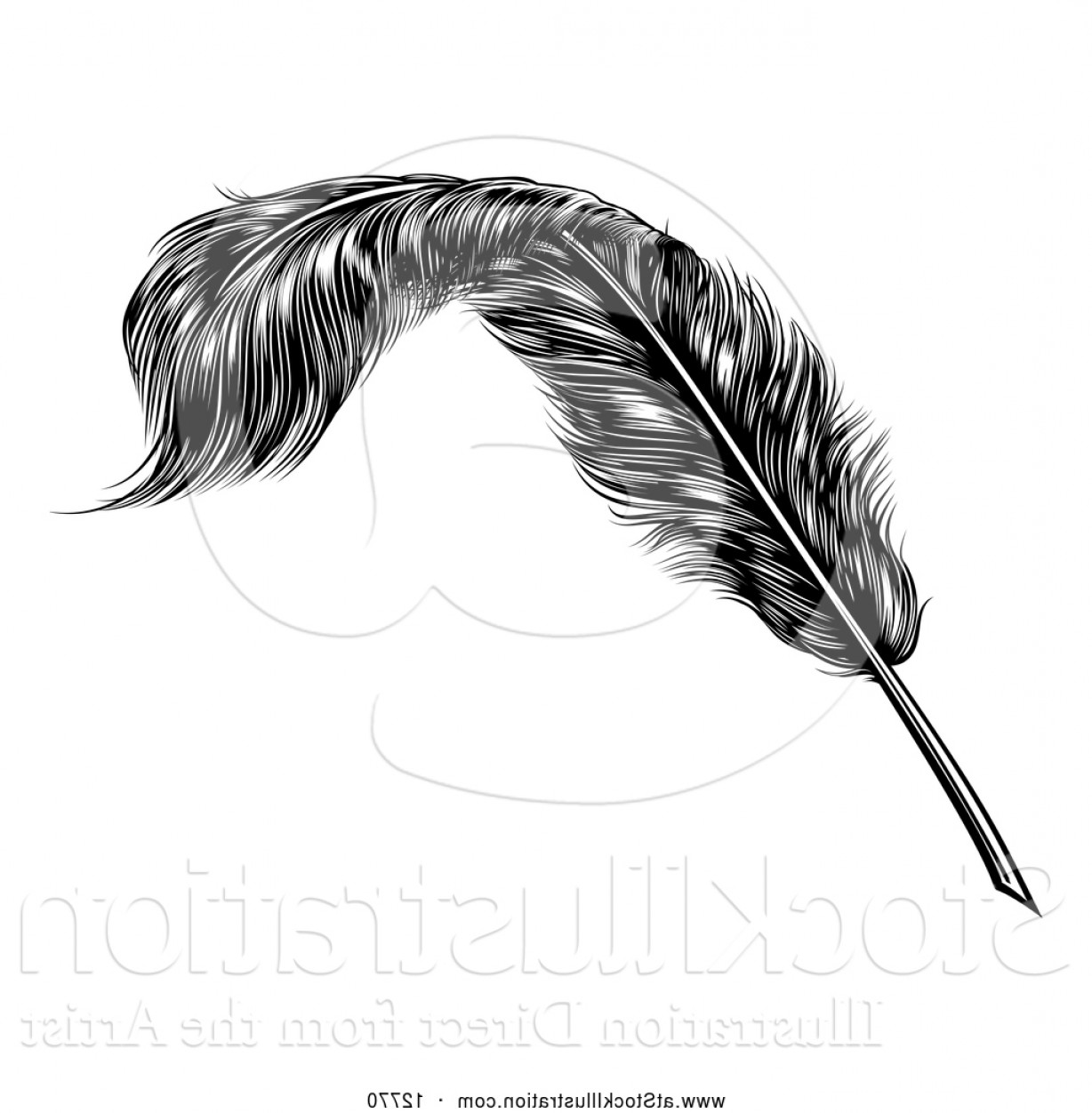 Quill Pen Vector: Vector Illustration Of A Black Engraved Feather Quill Pen By Atstockillustration