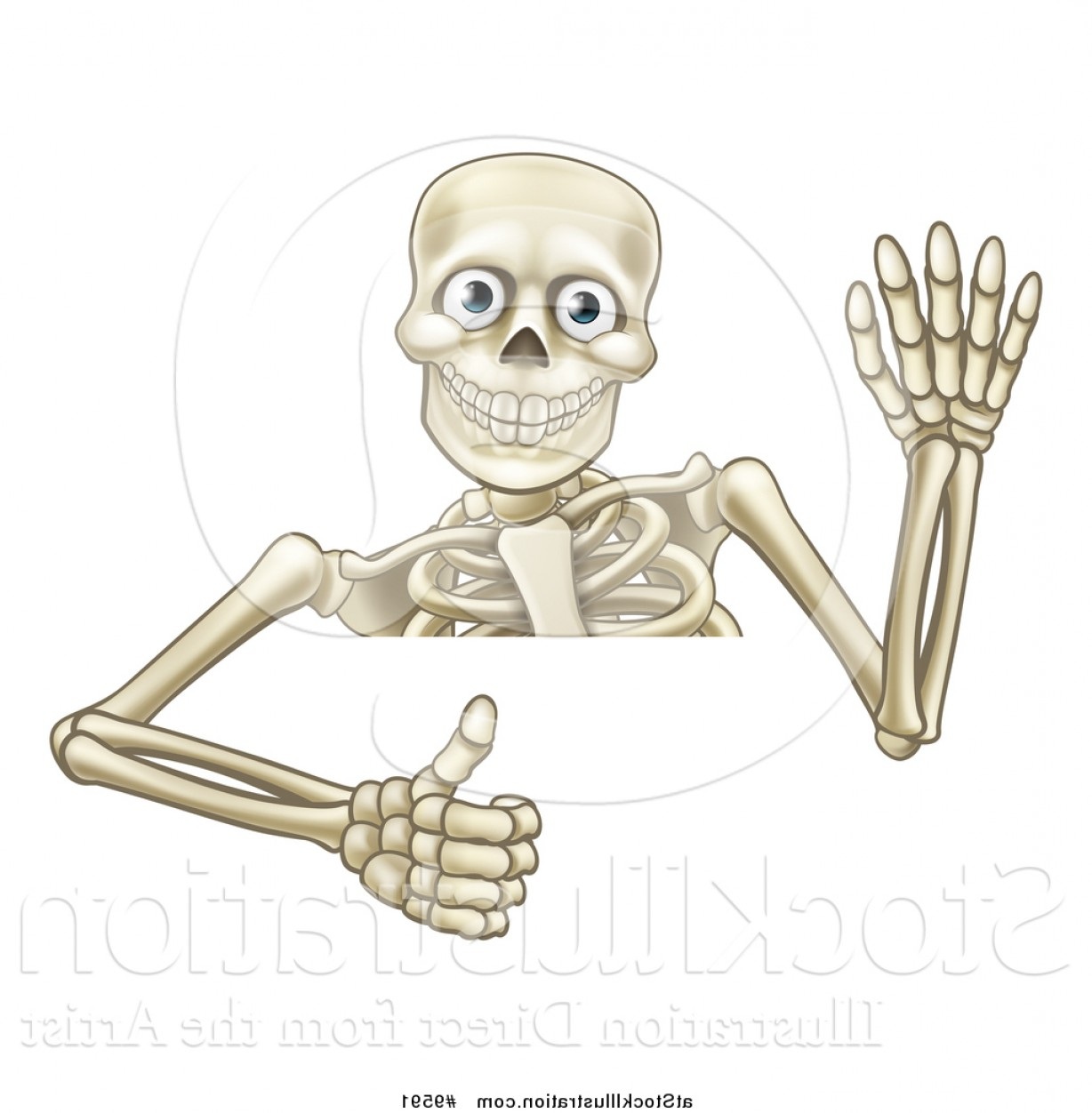 Hi Res Vector Human Skeleton: Vector Illustration Of A Cartoon Human Skeleton Waving And Holding A Thumb Up Over A Sign By Atstockillustration