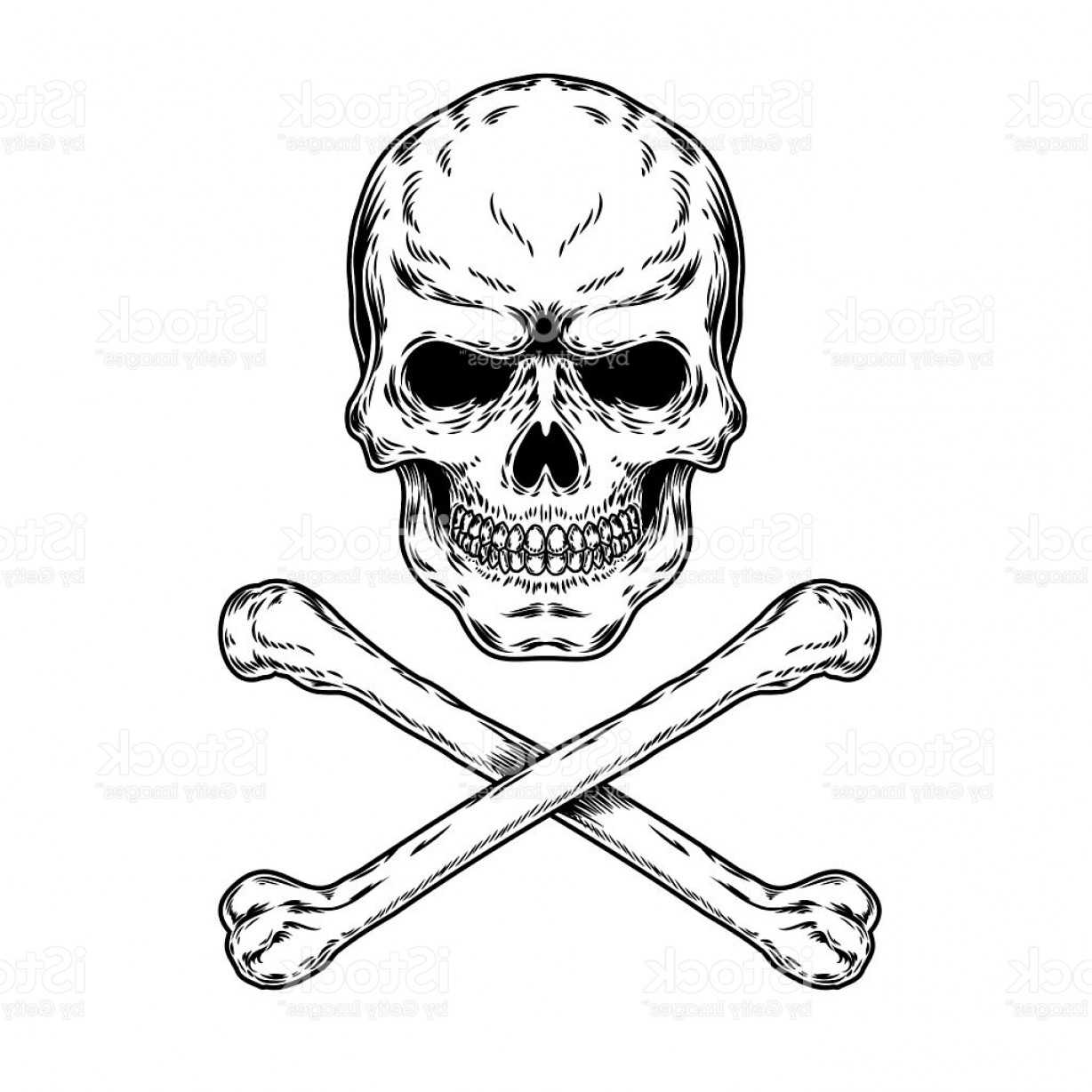 Skull ND Crossbones Vector: Vector Illustration Of A Skull And Crossbones Gm