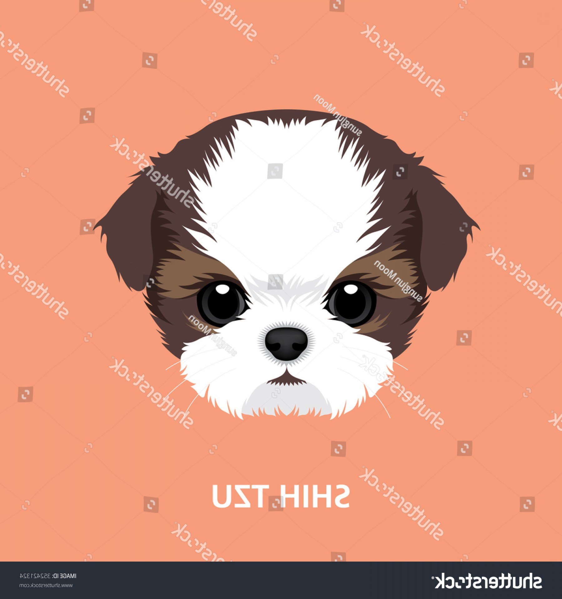 Shih Tzu Clipart-Vector: Vector Illustration Portrait Shihtzu Puppy Art