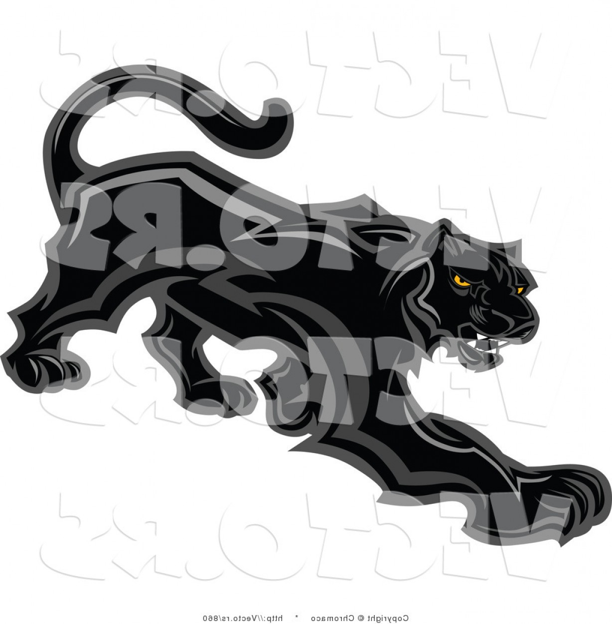 Vector Panther Football: Vector Of A Prowling Black Panther Mascot Preparing To Attack By Chromaco