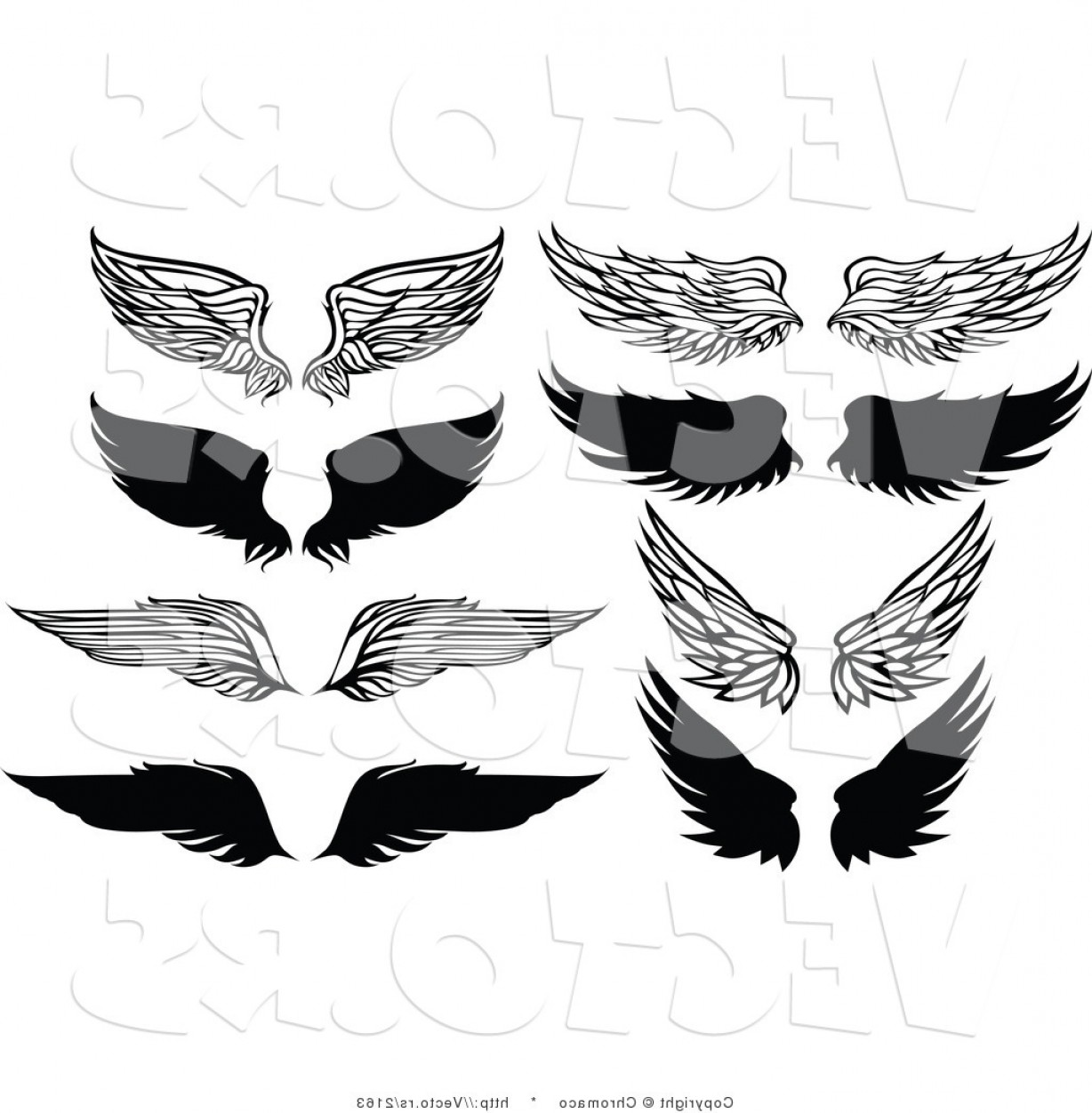 Vector Hi Res Black And White Wing: Vector Of Unique Feathered Wings Black And White Designs By Chromaco