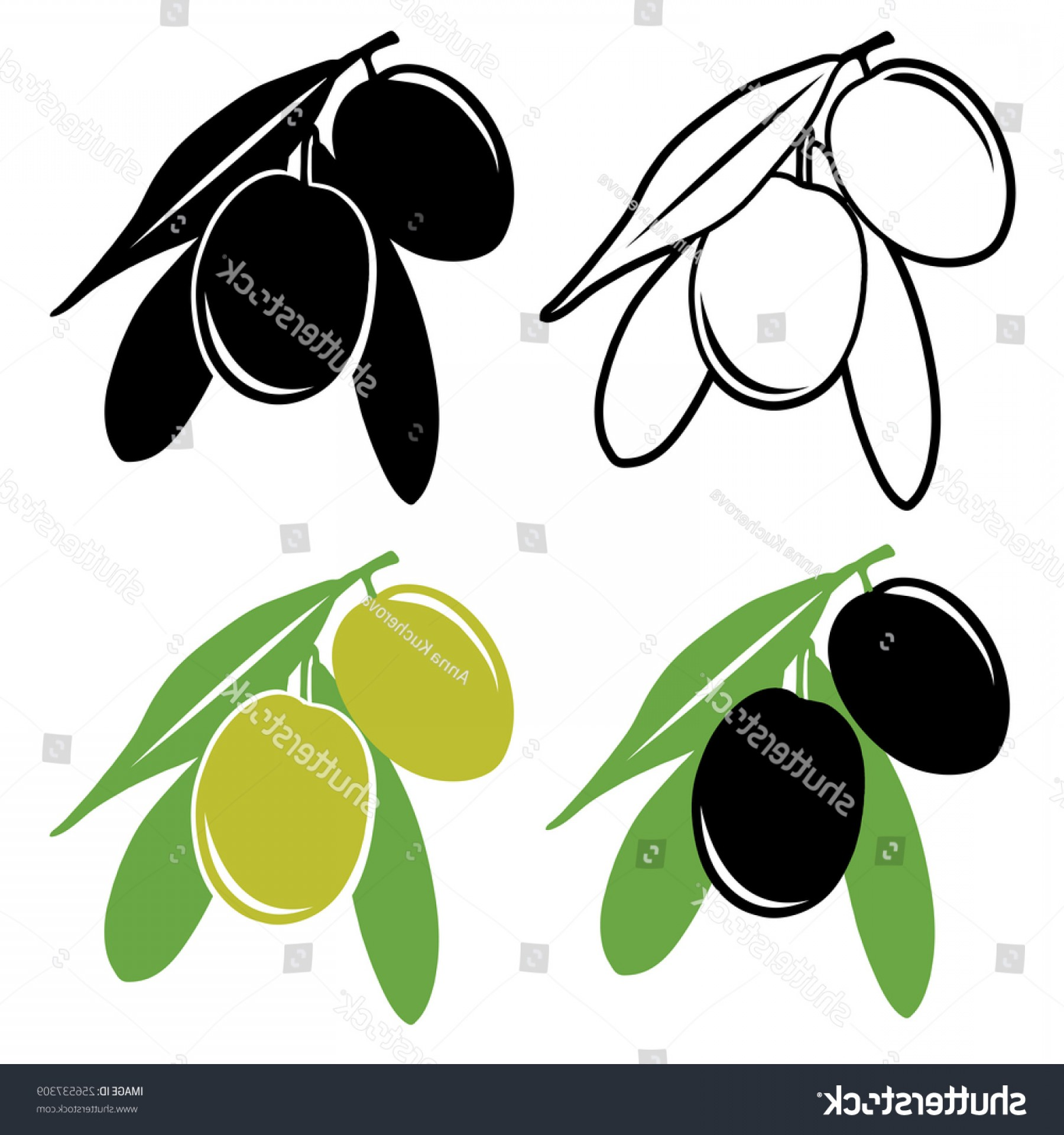 Olive Vector: Vector Olive Illustration Two Black Green