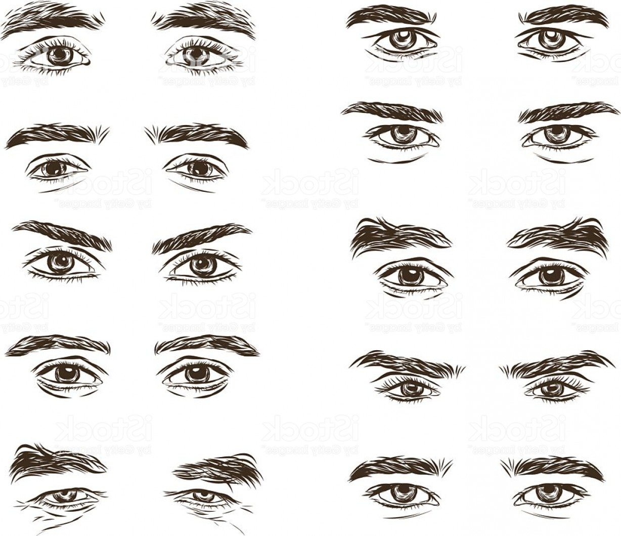 Male Eyes Vector Graphic: Vector Part Of The Male Person S Eyes And Eyebrows Gm